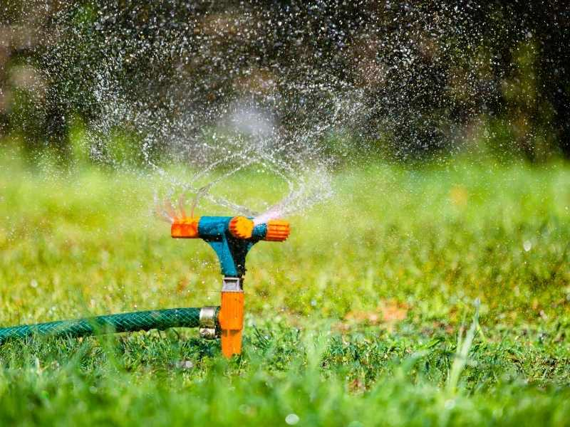 vandspreder i haven